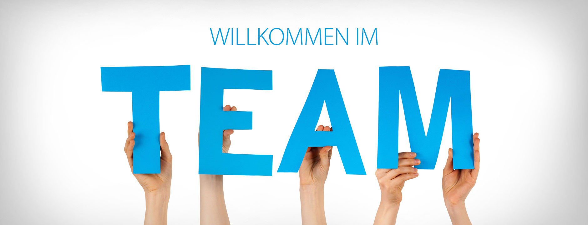 Neu im Team, Multimedia