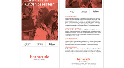 Barracuda - Flyer
